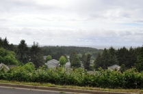 Ocean View From Street