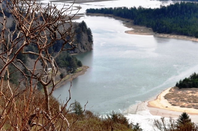 Salmon River Estruary